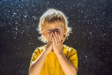 Poratka allergén