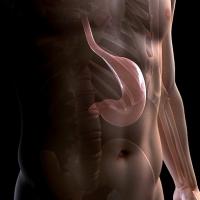 gyomorbypass, gyomorgyűrű