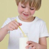 védőoltás, joghurt, probiotikumok