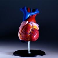 Liz Taylor, szívműtét