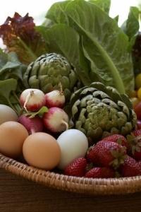 vegetáriánus, vegetarianizmus